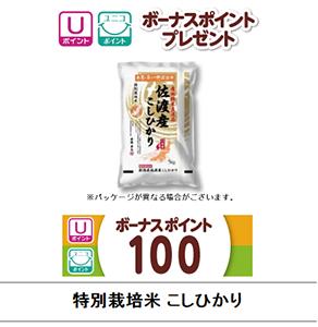 佐渡産 特別栽培米こしひかり