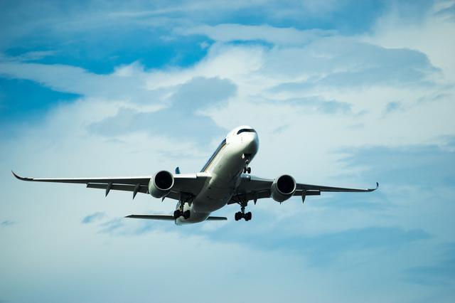 航空機遅延保険
